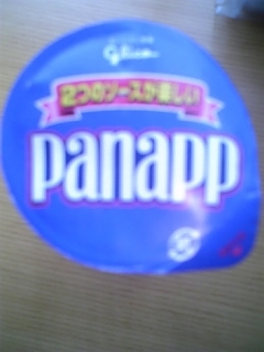 Panapp_lid_2