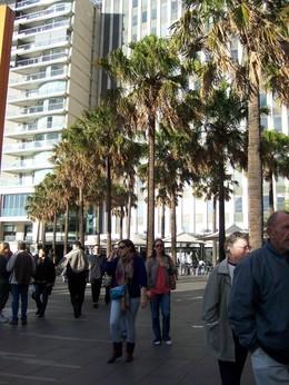 Sydney2007_632_2